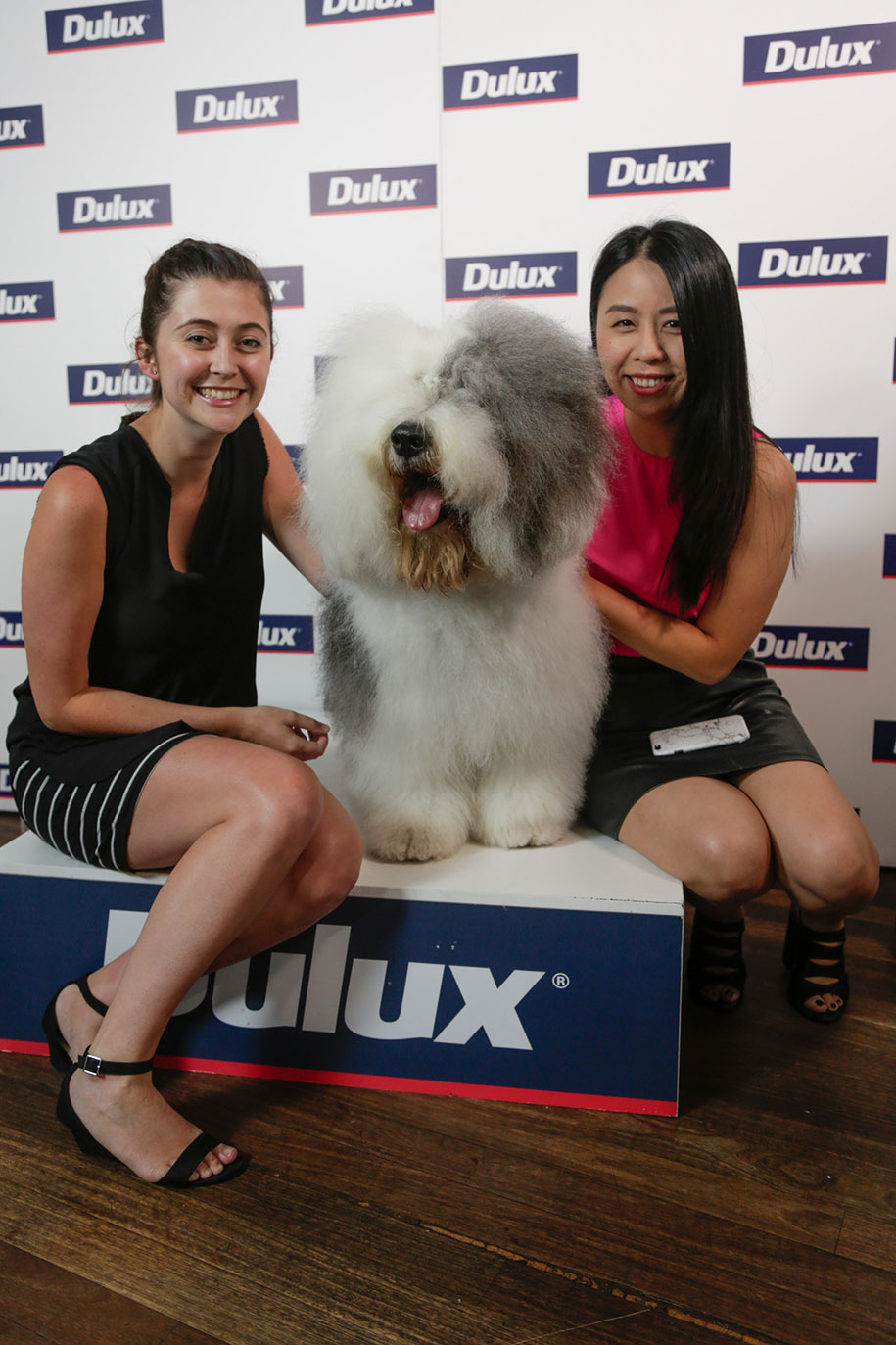 2016-Dulux-Colour-Launch-Sydney-©-SaltyDingo-2016-11570