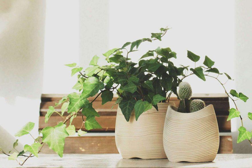 The Fiqugi Curve planter pots