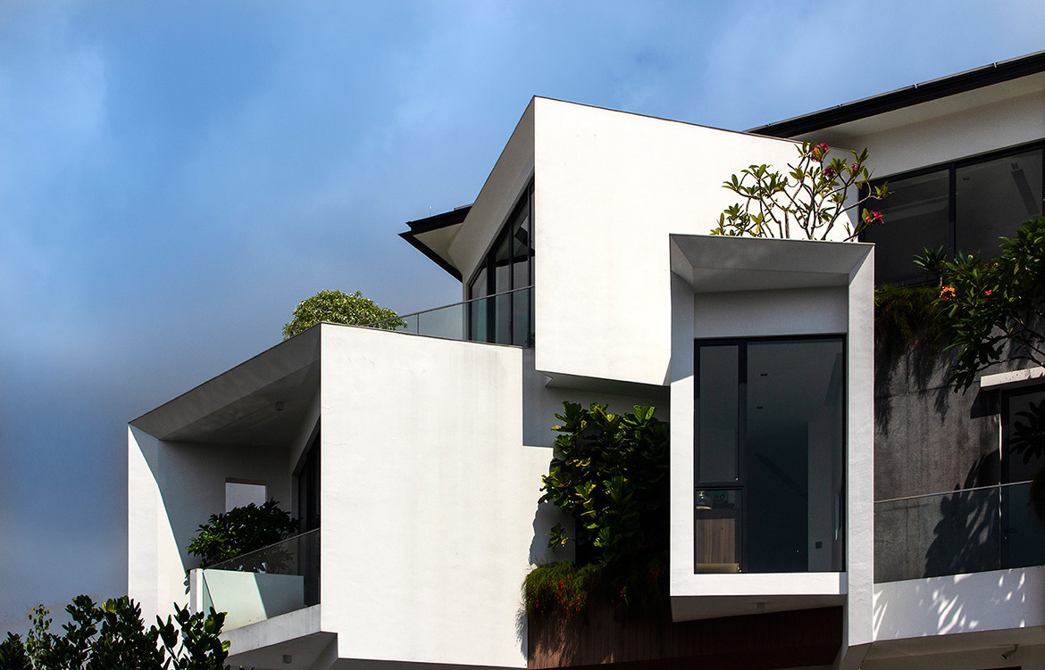 Frankel House Aamer Architects cc Amir Sultan exterior