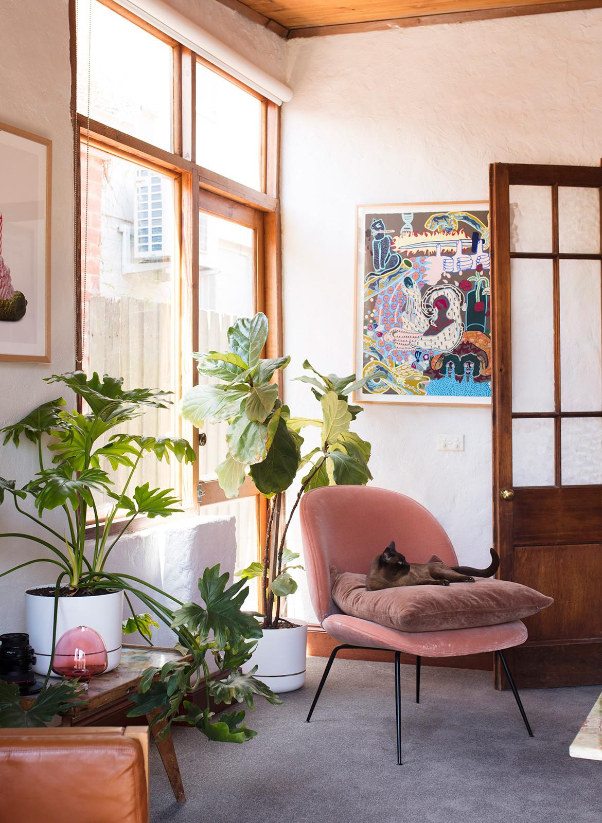 Anna Ross Kester Black CC Benjamin Hosking living room details