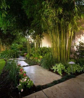 Asian landscaping design ideas bamboo