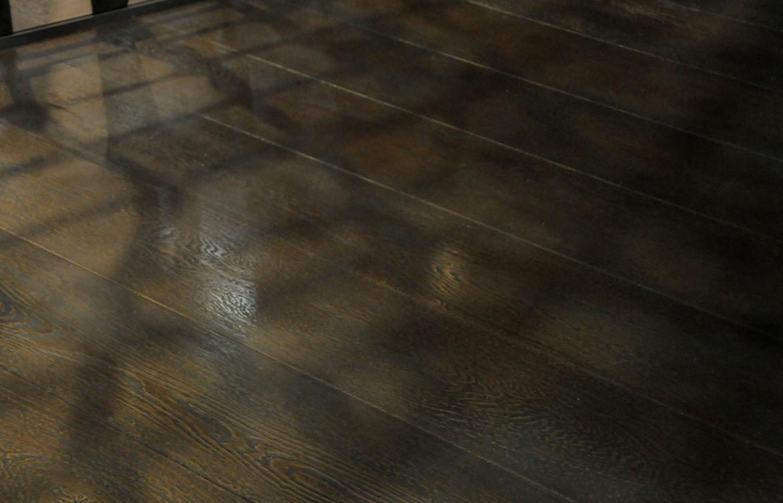 Axolotl Timber 4