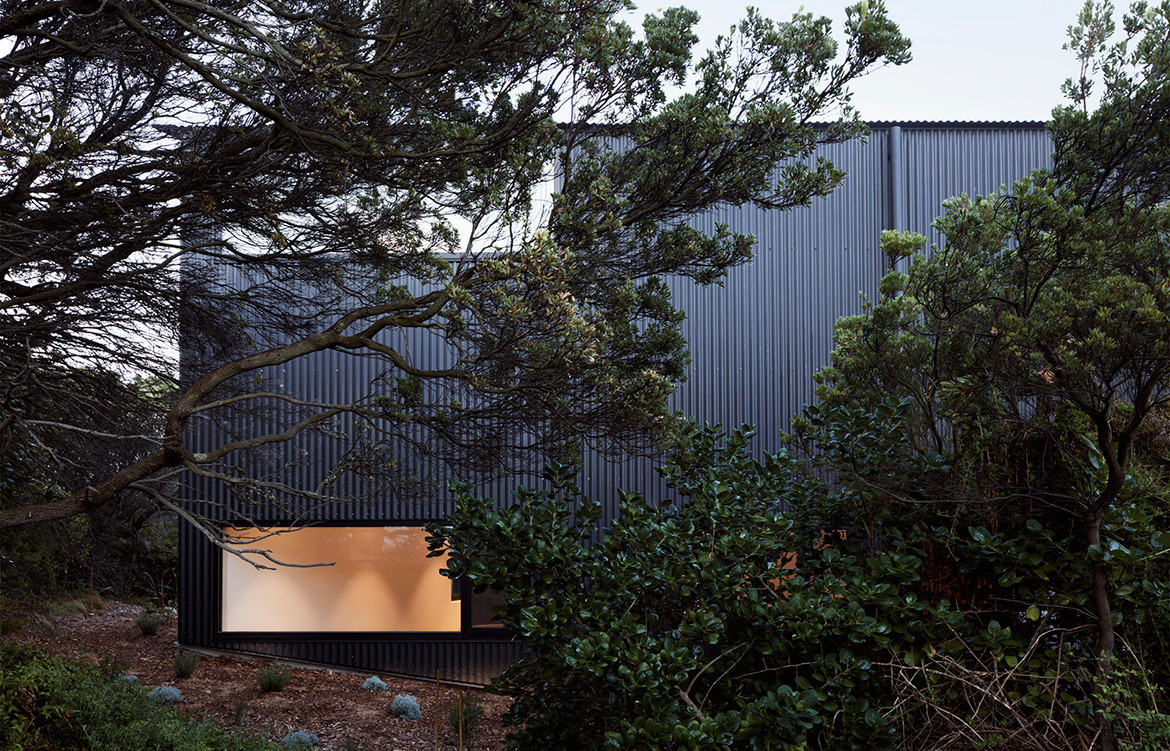 Barwon Heads House Lovell Burton Architecture CC Rory Gardiner landscape