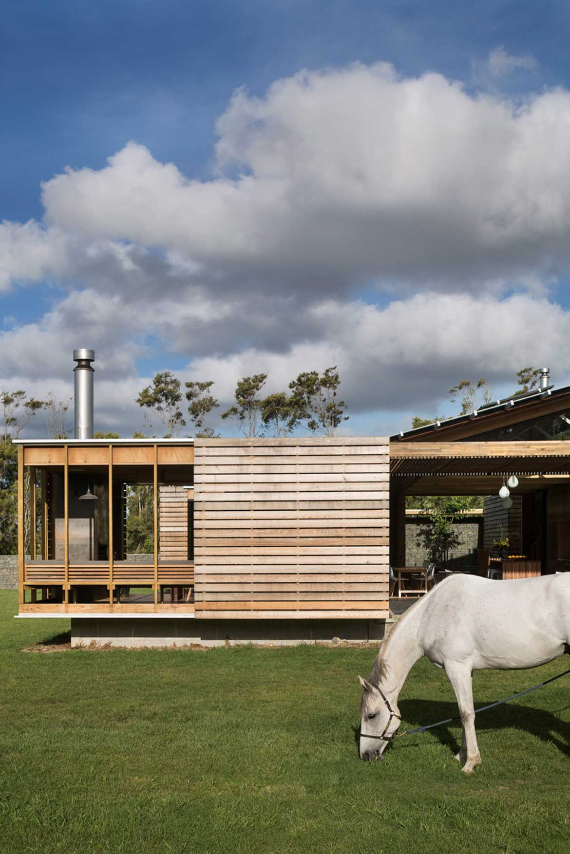 Bramasole House Herbst Architects cc Patrick Reynolds horse