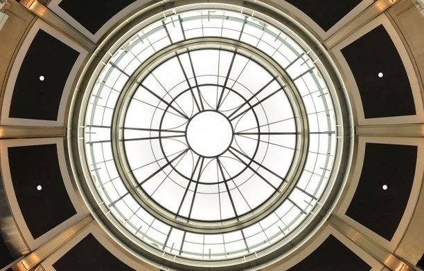 Chifley Plaza SJB Photography by Felix Forest Ceiling