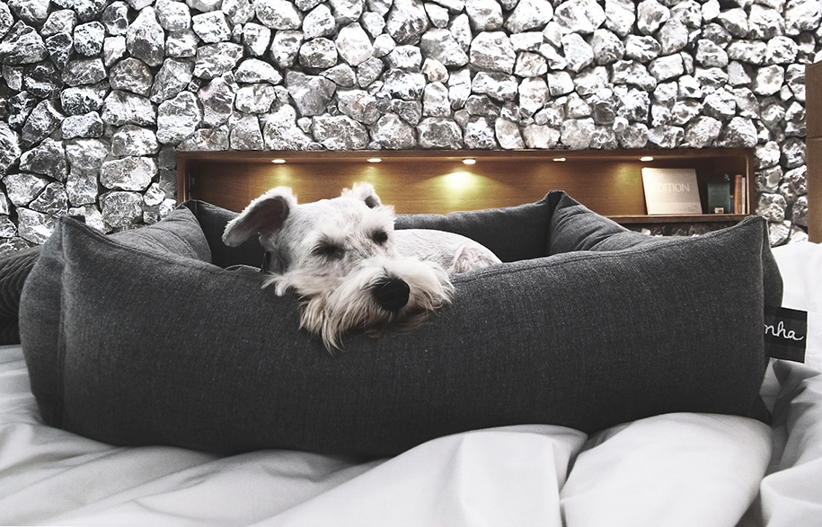 CuddleDogBed-HabitusLiving1