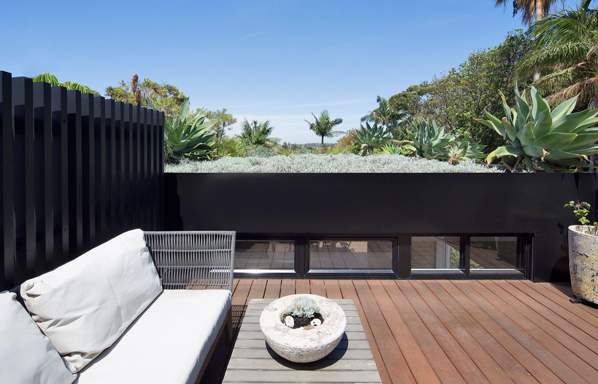 D+K House buckandsimple cc Simon Whitbread rooftop garden