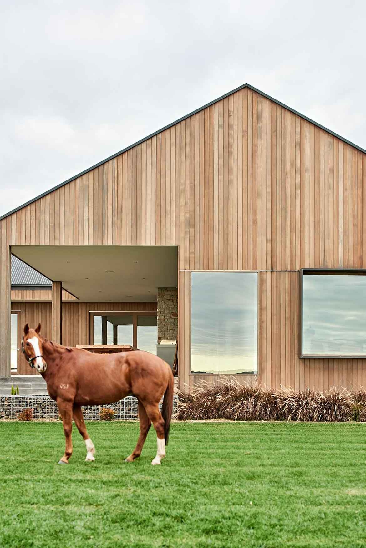 Dan Gayfer Design Ceres House horse
