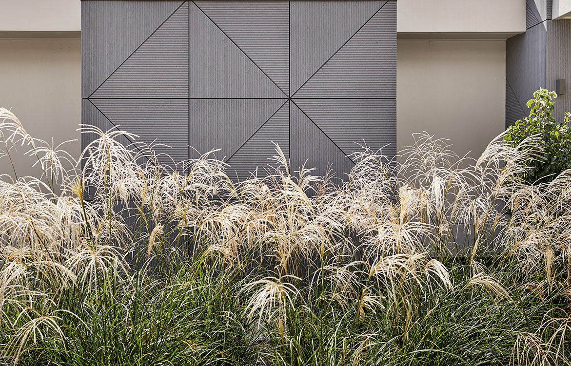 Earp Bros x Webber Architects cc Alexander McIntyre Photography | exterior feature