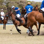 Elica NikolaTesla Switch Cookstop Portsea Polo game