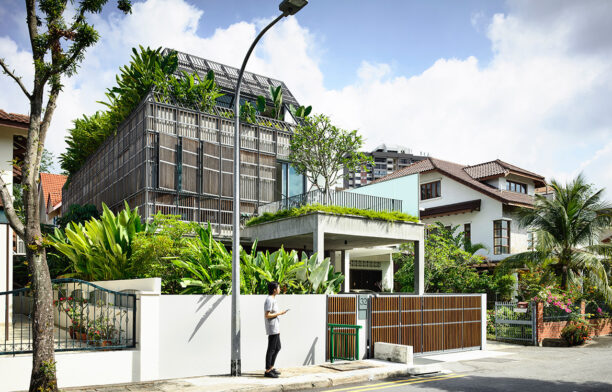 Streetscape of Fade To Green by HYLA Architects a concrete house clad in an aged chalky-grey trellis with tropical plants poking out