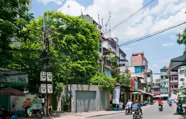 Green Renovation Vo Trong Nghia - Habitus Living