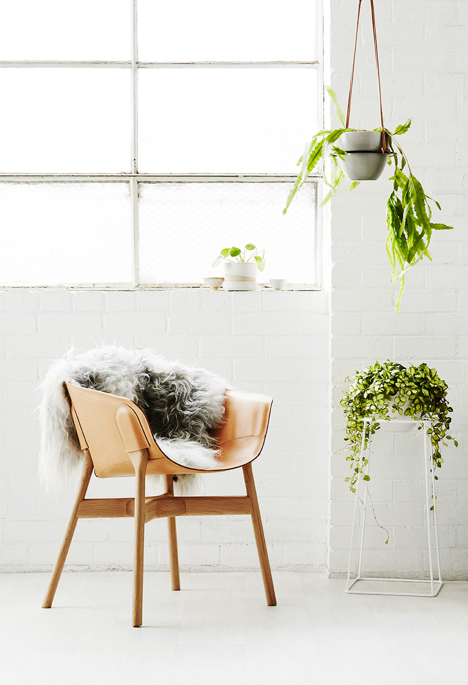 Ivy Muse | Habitus Living