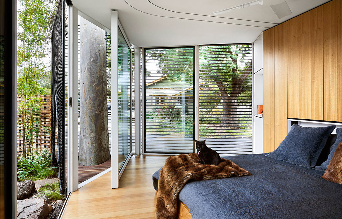 Kiah House Austin Maynard Architects cc Tess Kelly bedroom