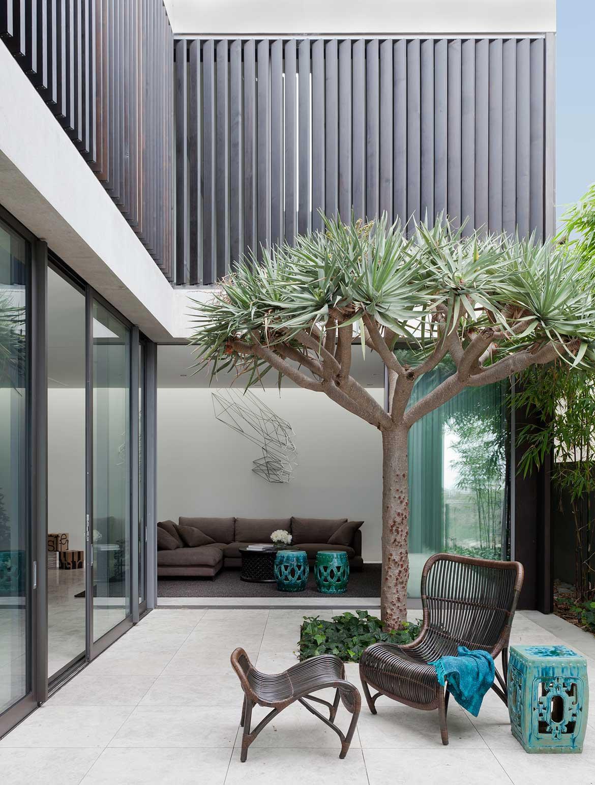Madeleine Blanchfield Architects Gordon's Bay House Felix Forest