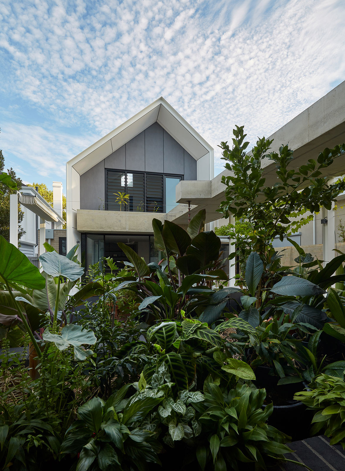 RZB House CAPA Studio CC Douglas Mark Black courtyard