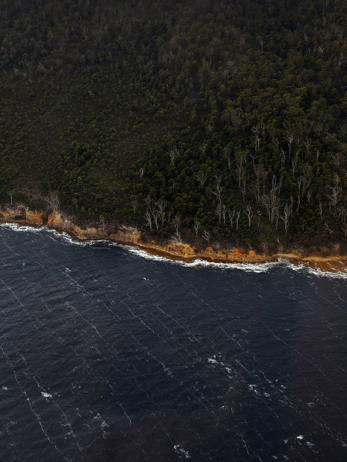 Return To Satellite Island | sealine