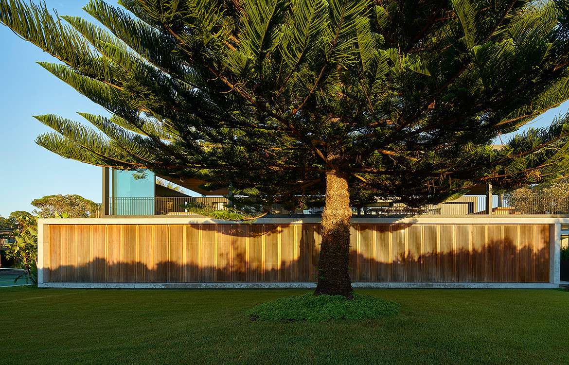 Sunrise House MCK Architects CC Michael Nicholson sunrise tree