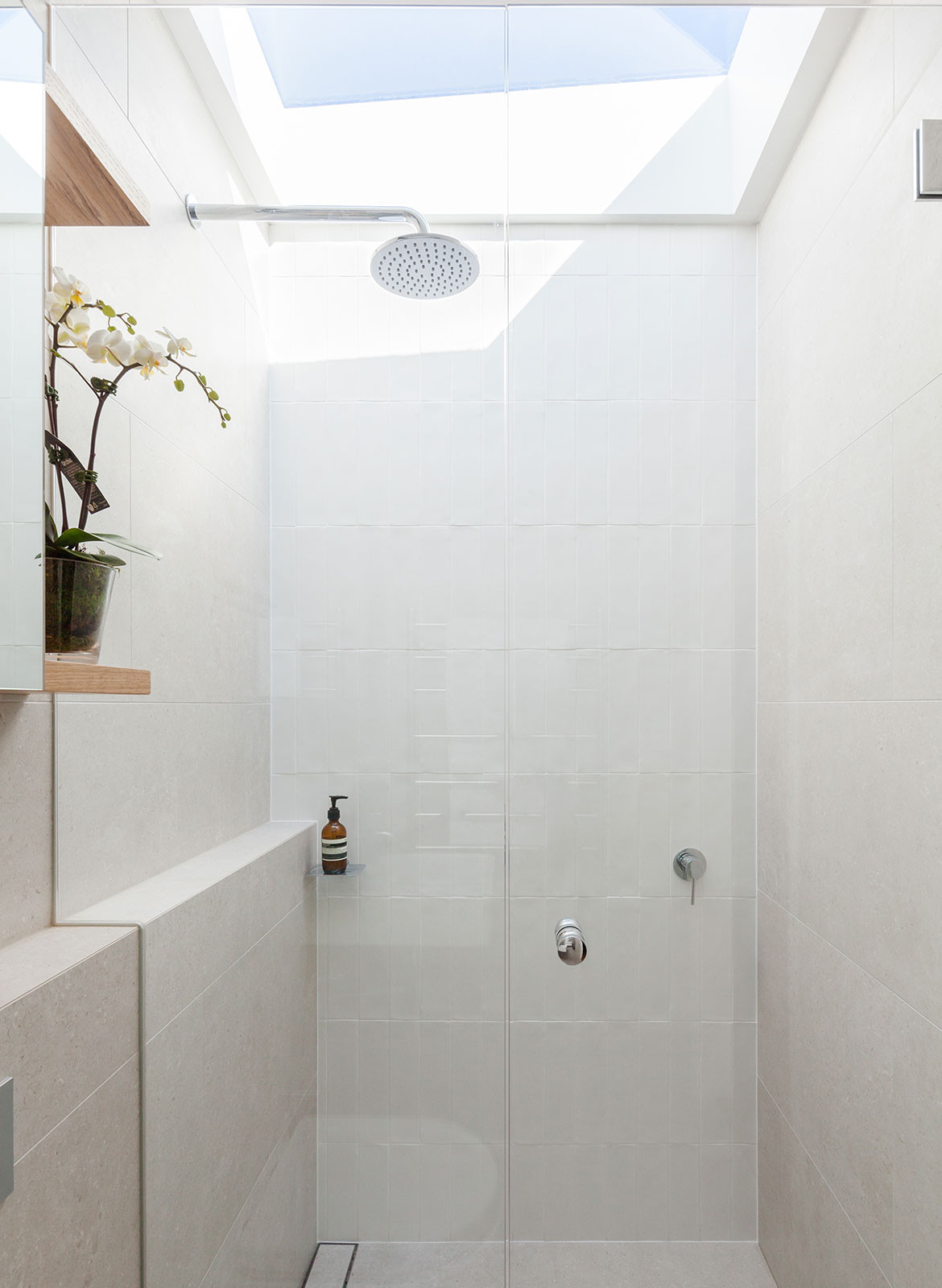 Surry Hills House Michael Cumming Architect CC Katherine Lu skylight shower