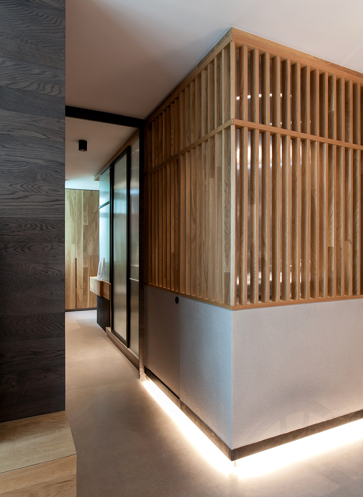 Taikoo Shing Apartment Studio Adjective lighting skirting timber battens textures