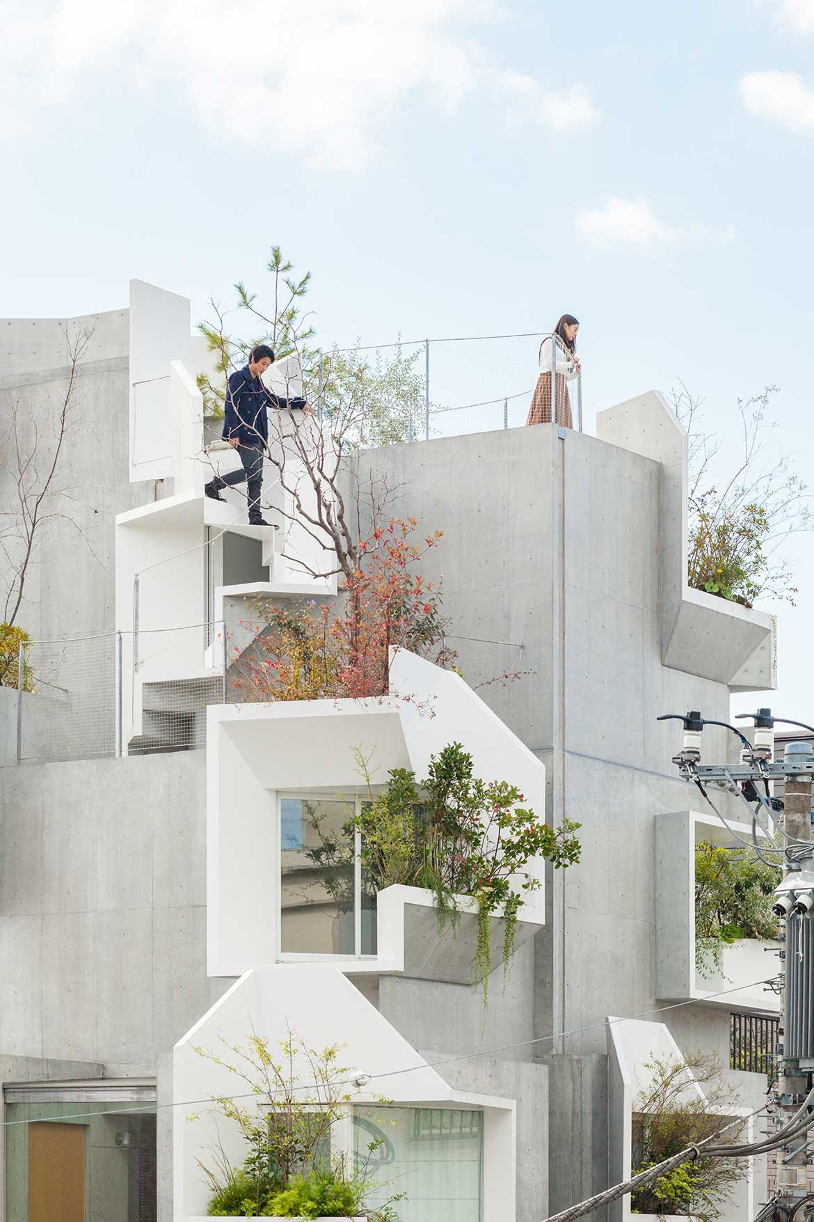 Tree-ness House Akihisa Hirata cc Vincent Hecht concrete boxes