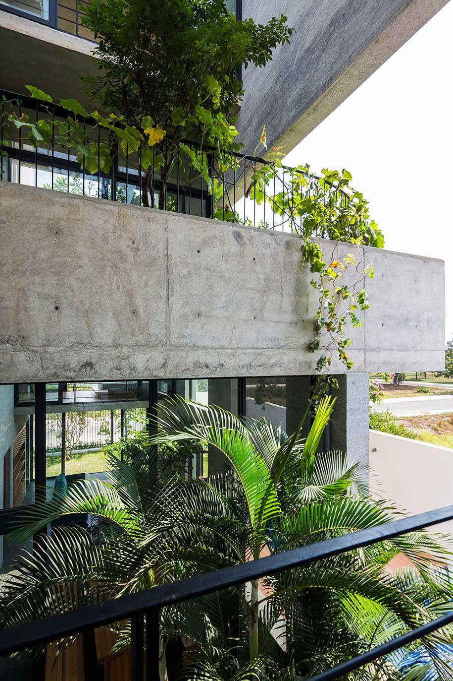 Vo Trong Nghia Binh House Treebox
