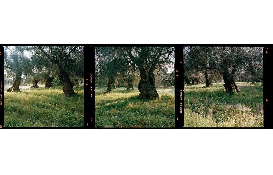 grove_4