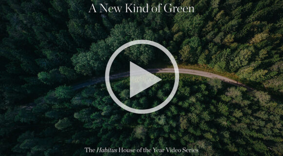 What Does a New Green Mean to you?