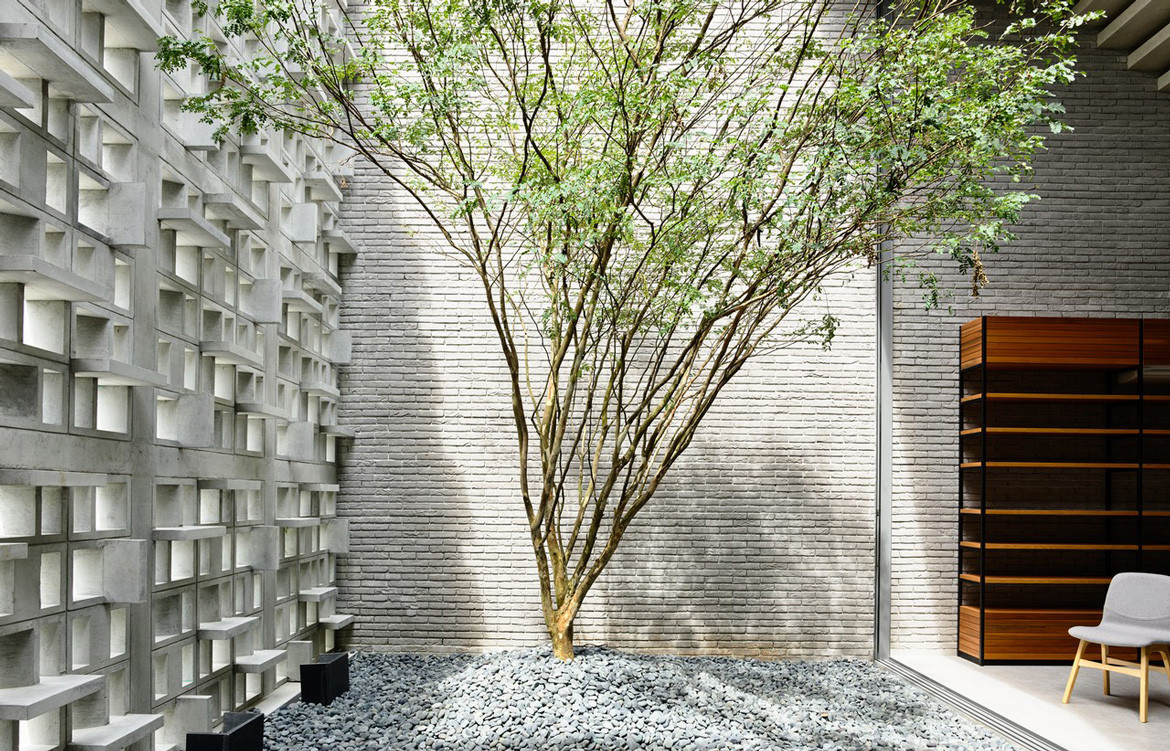 Lily Avenue HYLA Architects Tree