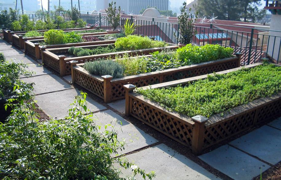 rooftop_gardens_9