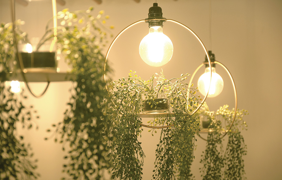 satelight_hanging-garden