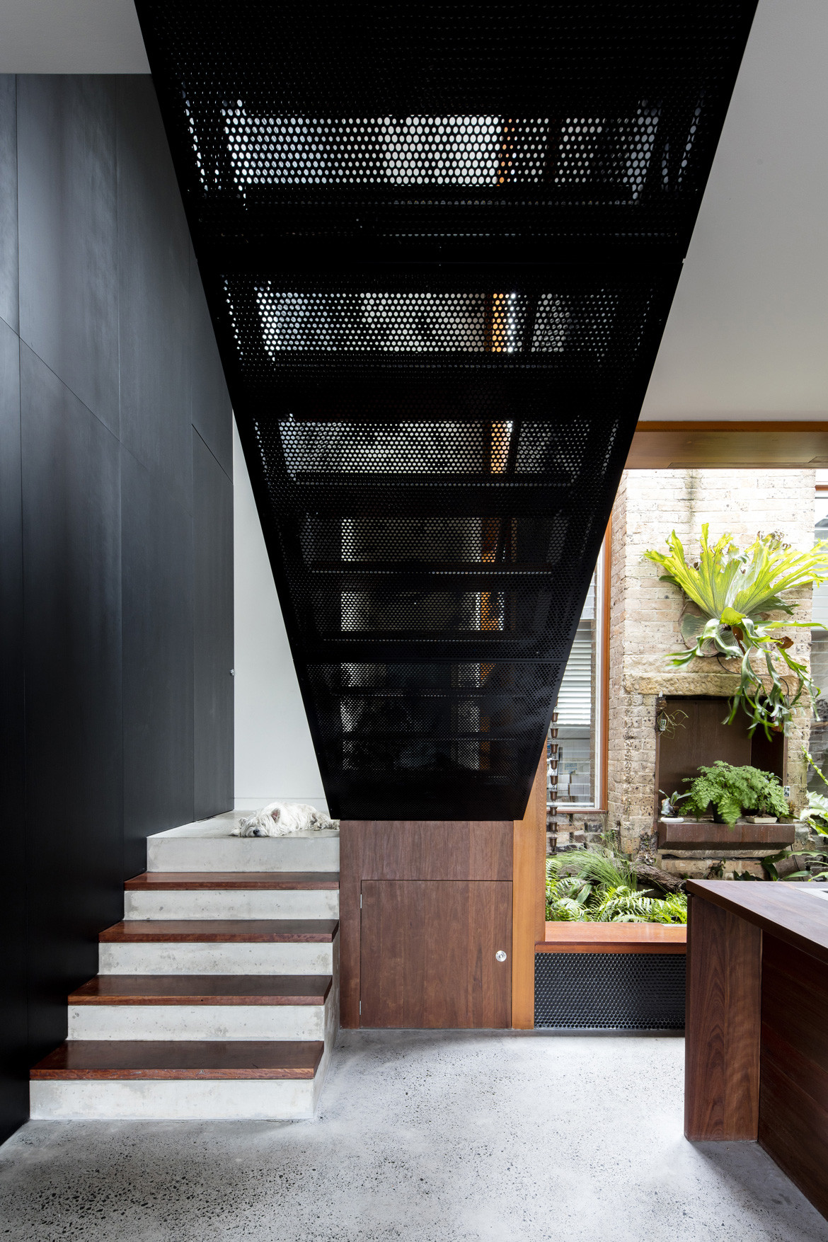 Screen House Photography by Brett Boardman Staircase